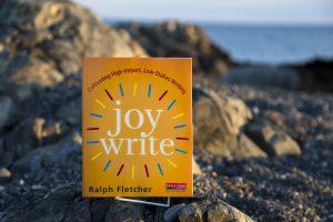 Joy Write Book Cover