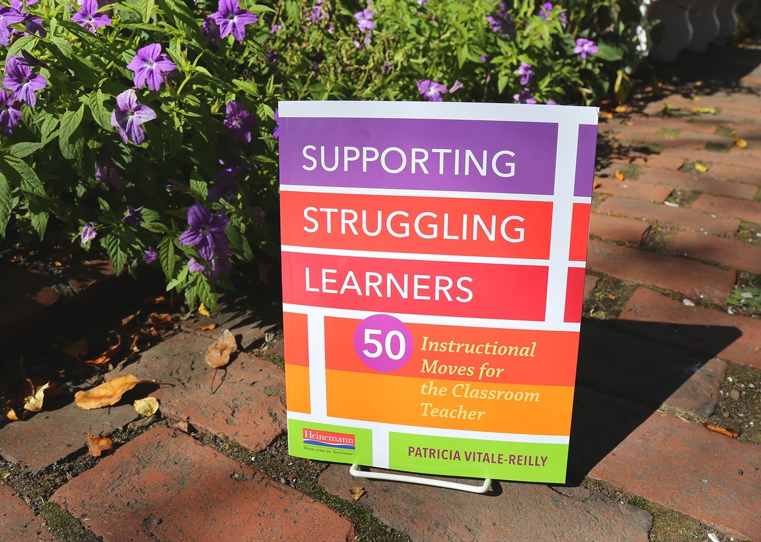 Who Are Struggling Learners?