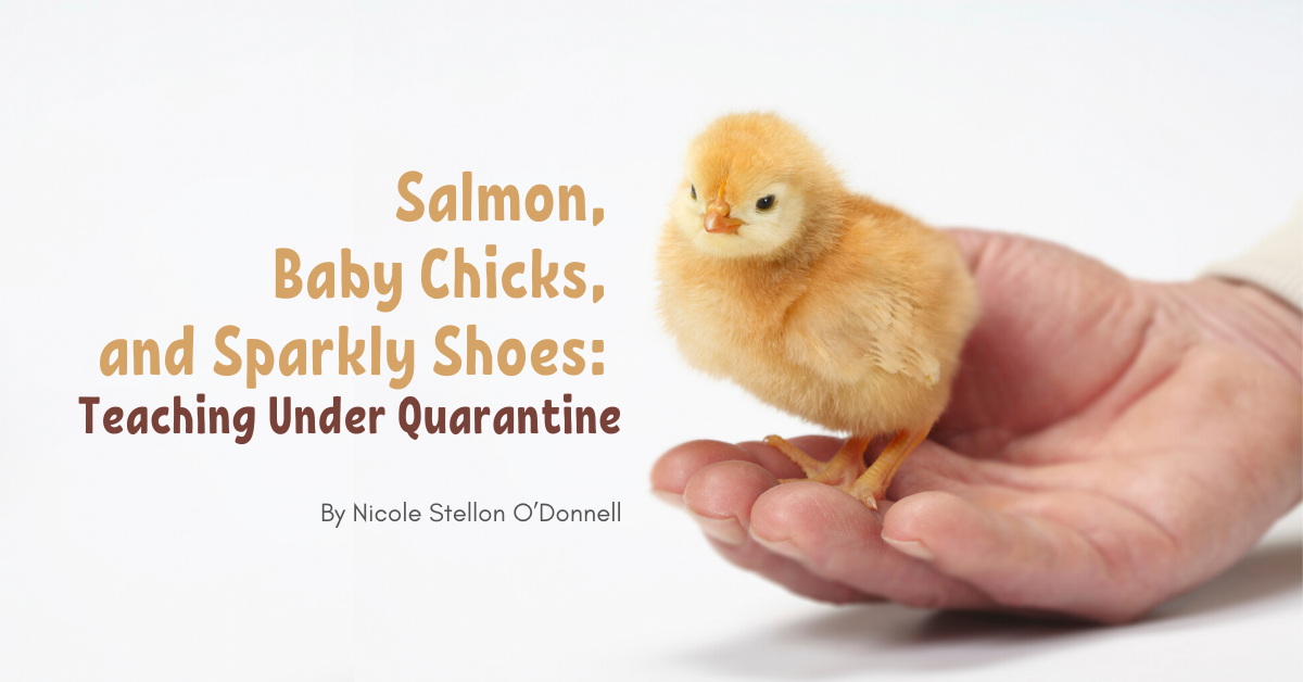 Salmon, Baby Chicks ...Teaching Under Quarantine (1)