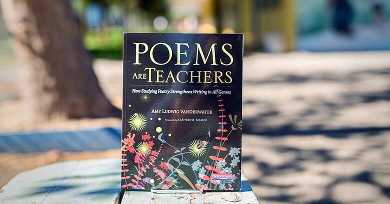 What skills can poetry Teach Us?